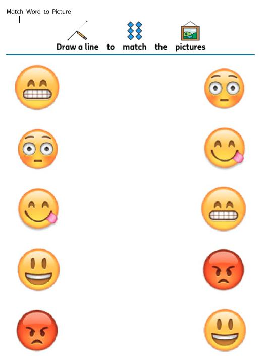 emoji emotional regulation SEN worksheet