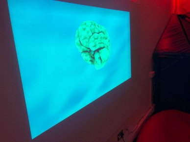 Video projection in the Multi-Sensory Room