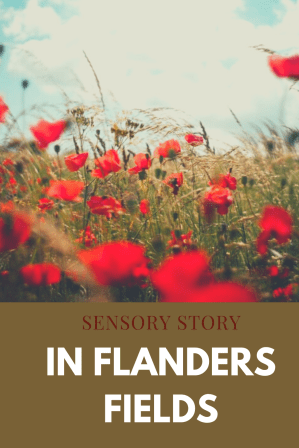 In flanders fields sensory story PMLD