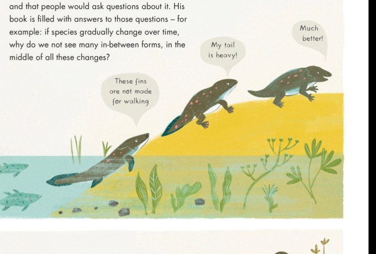 Evolution illustrated childrens book