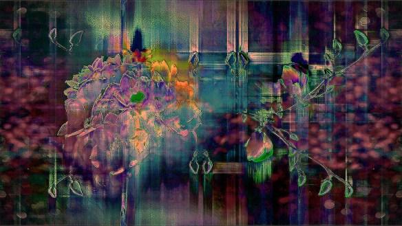 silvinhas garden