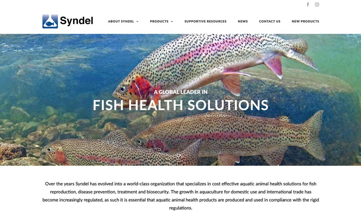 Syndel Website Design