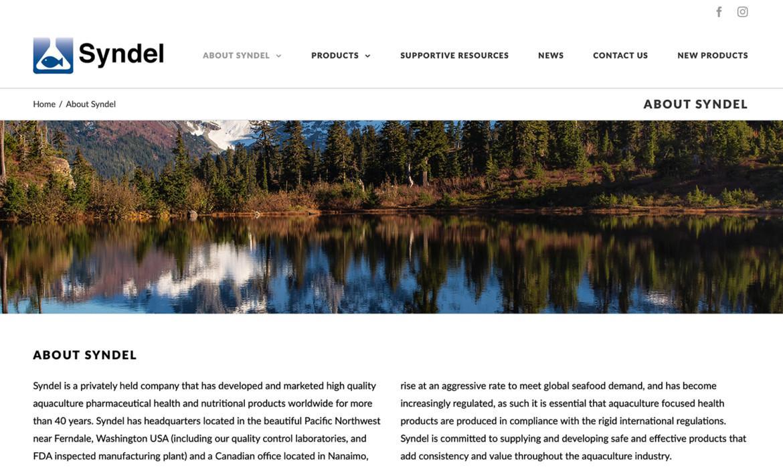 Syndel Website Design About