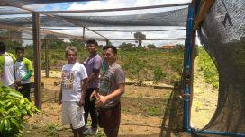 Visita a viveiro de mudas da Cooprusan