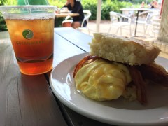 Tod's Tasties' Standard (cheddar, bacon, scrambled egg on biscuit) and a cold iced tea with honey