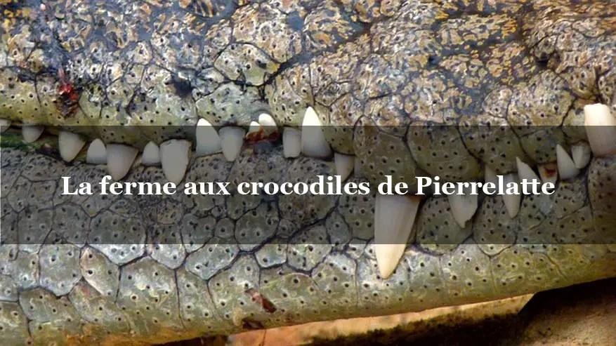 Ferme aux crocodiles : frissons aux portes de Montélimar – Drome