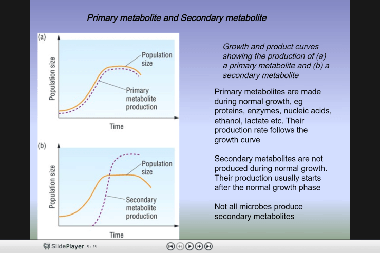 microbes growth metabolism primary secondary probiotic prebiotic kinetics
