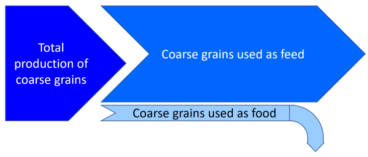 use of grains as food and feed, nutrition, yield, climate change