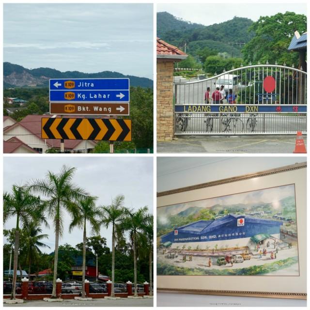 jitra-dxn-farm-malajzia