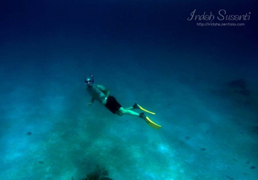 Snorkeling: Free dive helps!