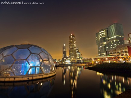 "The ""backyard"" of De Rotterdam"