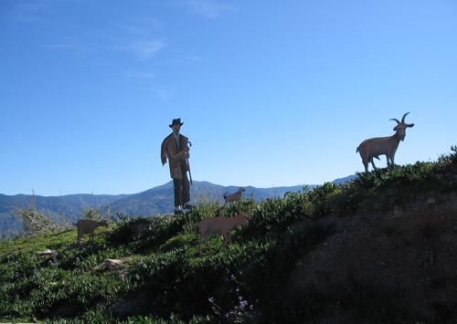 Shepherd caring for flock