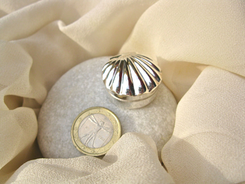 Scallop shell box