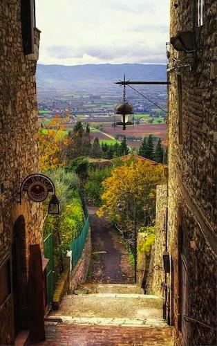 Assisi Assis Tau Francis