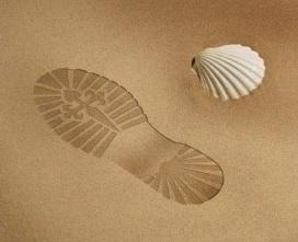 Camino step