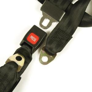 "Lap Belt 50"""