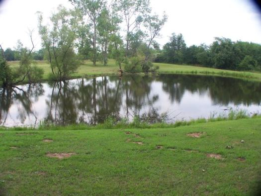 retentionpond