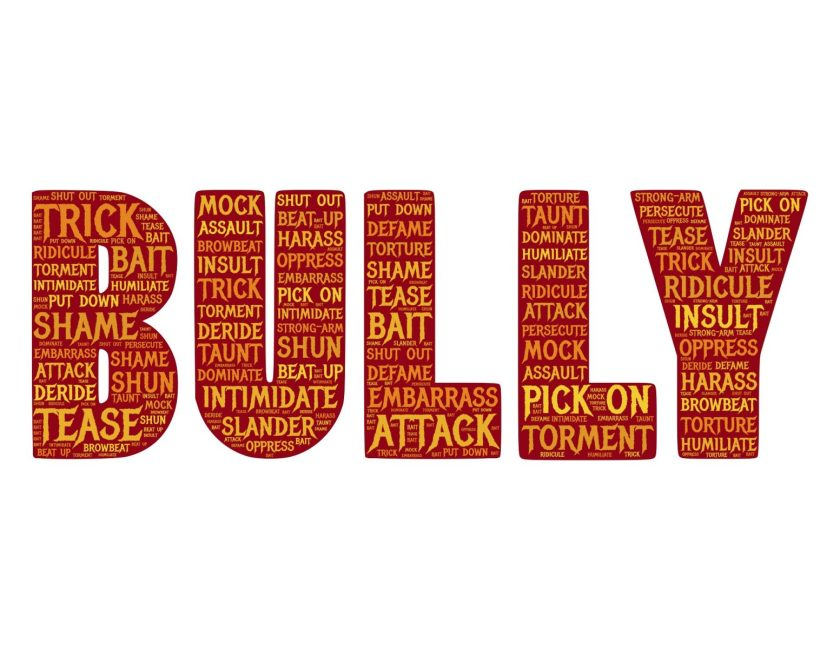 Bully graphic