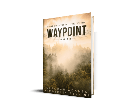 Waypoint by Deborah Adams and Kimberley Perkins. Book cover for Independent Book Review