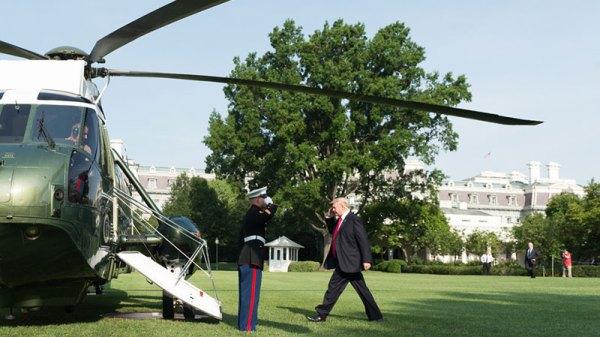 Trump Walking