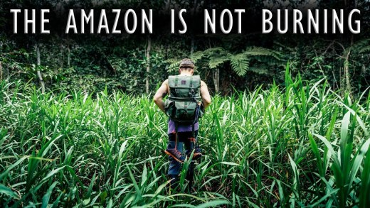 Calm Down the Amazon is not on Fire!