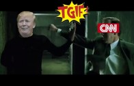TGIF: CNN, The Red Pill & other stuff