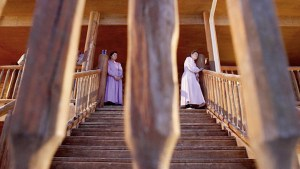 Breaking The Cycle: A Peek Into Polygamy