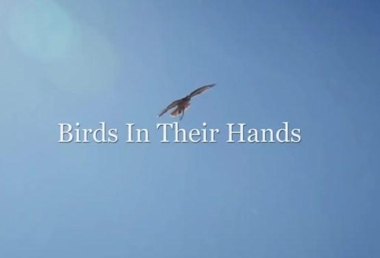 Birds In Their Hands