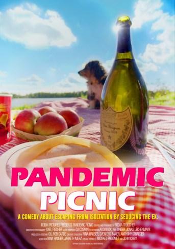 Pandemic Picnic