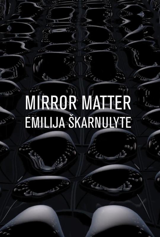 Mirror Matter