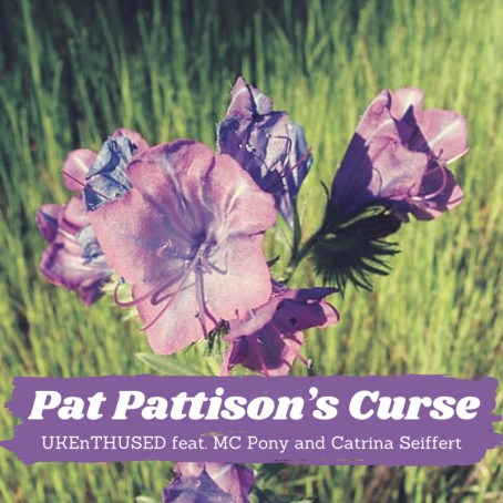 Pat Pattison's Curse