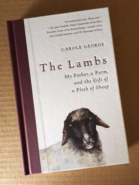 Cover of The Lambs by Carole George.
