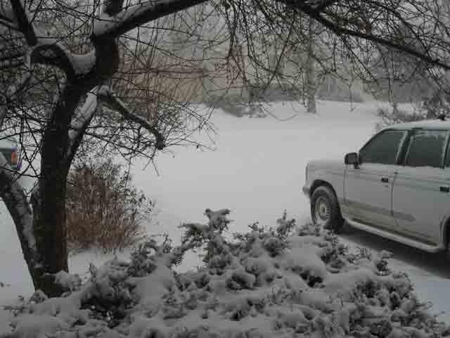 Snowfront72