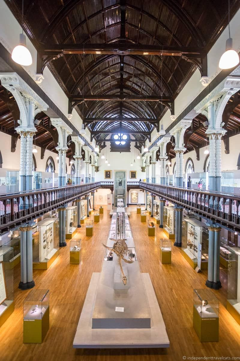 Hunterian Museum top things to do in Glasgow Scotland attractions