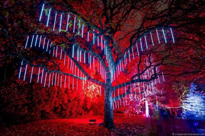 Royal Botanic Garden Edinburgh Christmas in Edinburgh Scotland December