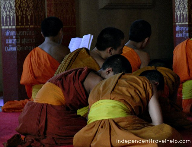 monks, laos, buddhist, novice monks