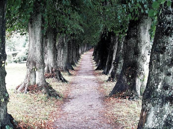 Friedhof Sieseby