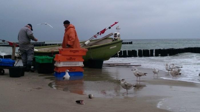 FischerFischland