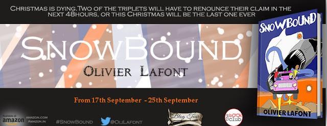 banner of snowbound blog tour