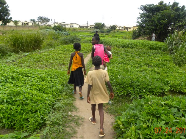 Three girls take me to their family survival gardens in Ghana