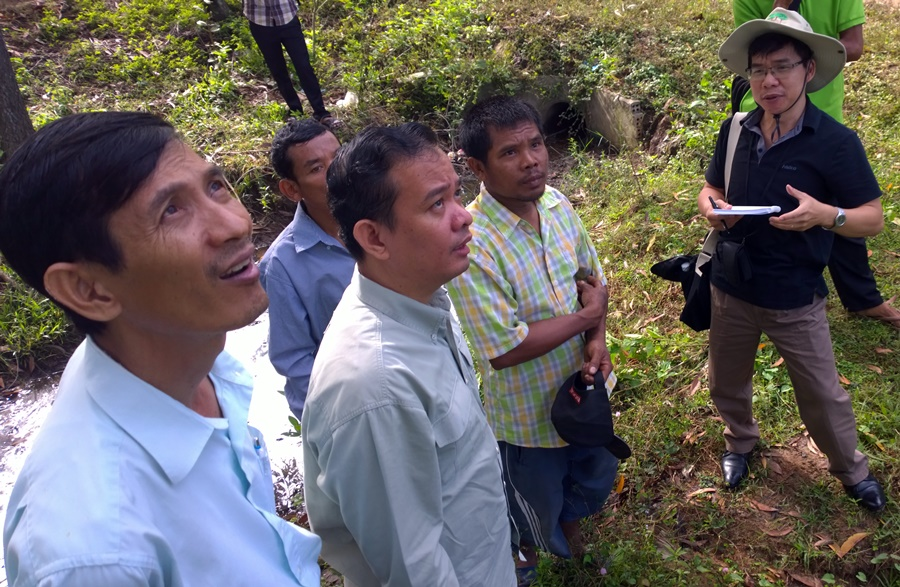 ASEAN calls for agroforestry guidelines