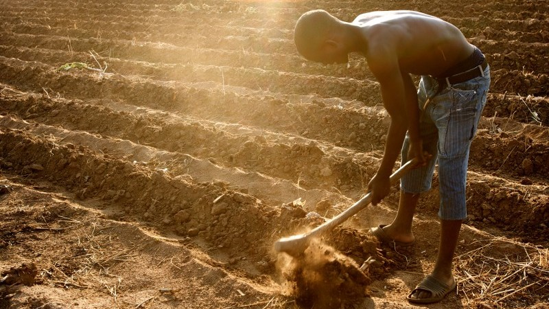 African youth go digital to keep climate-smart farming alive