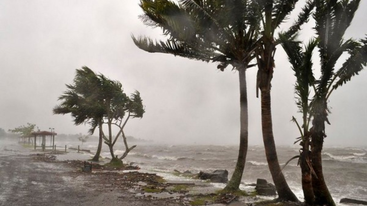 Cyclone Tauktae: Temporary shelters set up in Mumbai, Navy on standby