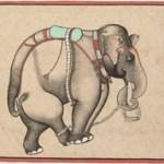 The Elephant's Eye