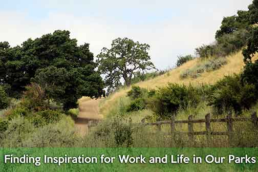Finding Inspiration for Work and Life in Our Park