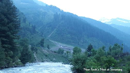 Near Farah's Nest at Sonamarg