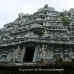 Ten Days To Tirumala