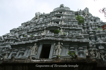 Ten Trips Up Tirumala Hills in 10 days!