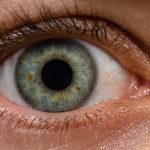 Vision, Clarity and Cataracts