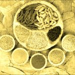 Herbs and Spices Improve Health